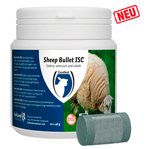 Sheep Bullet ISC für Mutterschafe