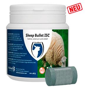 Sheep Bullet ISC für Mutterschafe